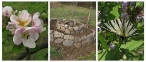 tvorime prirodni zahradu1a