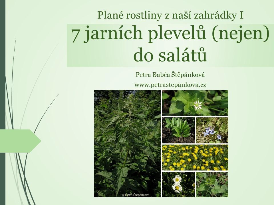 7_jarnich_plevelu_(nejen)_do_salatu